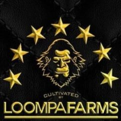 Loompa Farms
